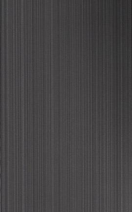 Neon Black Wall Tile 250x400x8mm