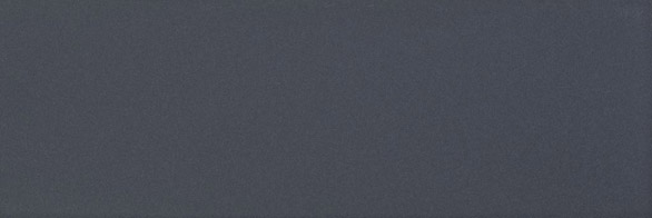 Chroma Dolphin Gloss 300x100x8 Priced Per Box