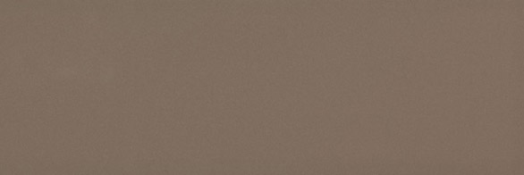Chroma Coffee Gloss 300x100x8 Priced Per Box