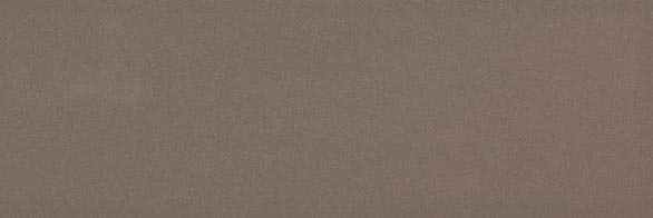 Chroma Coffee Gloss 300x100x8 Priced Per Box