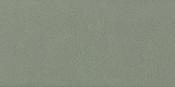 Savoy Sage Gloss 200x100x6.5