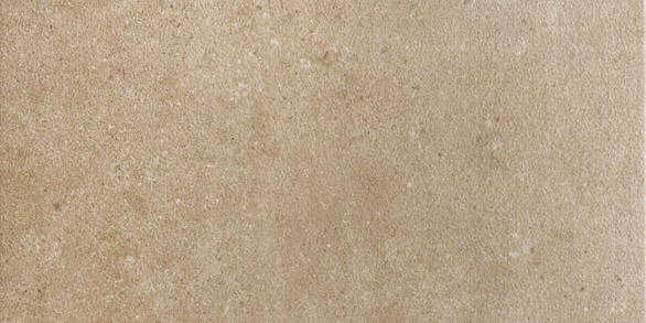 Discovery Brown Texture Rectangle 604x300