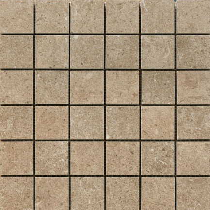 Discovery Brown Smooth Mosaic 300x300