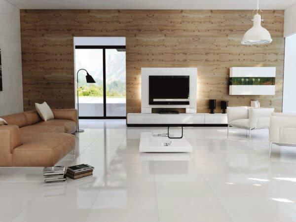 Frost Porcelain Floor Tiles